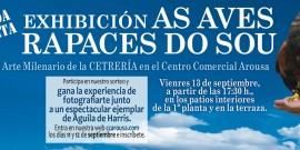 El CENTRO COMERCIAL AROUSA ORGANIZA UNA EXHIBICIÓN DE CETRERÍA